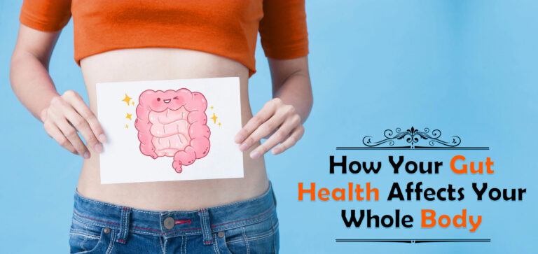 The intestinal flora plays a metabolic and physiological role